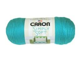 Caron Simply Soft Yarn in Blue Mint - $6.99