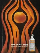 Absolut Vodka 2009 Absolut Mandrin advertisement 8 x 11 ad print - $4.50