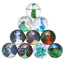 Koala Superstore Home Office Decorative Magnets Beautiful Glass Refriger... - $18.14