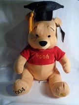 2004 Disney Store Exclusive Winnie the Pooh Graduate Grad Twill Fabric P... - $14.36