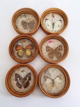 Vintage Pressed Moth Butterfly Wooden Coaster Set Of 6 - $19.34