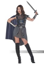California Costumes Lady Knight Warrior Medieval Adult Halloween Costume... - $39.85