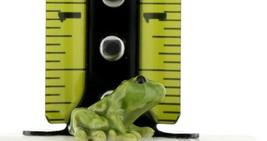 Hagen Renaker Miniature Frog Papa and Baby Ceramic Figurine Set image 2