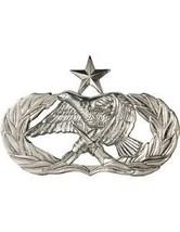 USAF Badge (AF-341B) Senior Aircraft Munitions Maintenance No Shine - $7.36