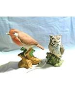 Owl and Robin 2 Vintage Bisque Porcelain Birds - $7.99