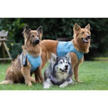 HURTTA SUMMER COOLING VEST PROTECTS VITAL CHEST REGION FOR COOL COMFORT ... - $39.19