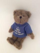 "BOYDS Head Bean Collection A Hug Can Turn Your Day Around TEDDY BEAR 8"" ... - $9.49"