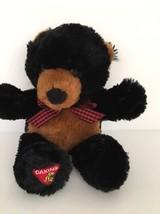 Dakin Teddy Bear - $9.89