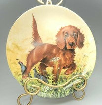 Knowles China Company~Missing The Point~The Irish Setter~Collector Plate... - $24.00