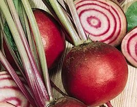1 Pound Seeds - Chioggia Guardsmark/Beta vulgaris beet - $235.44