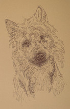 Australian Terrier Dog Art Print #32 Stephen Kline will add dogs name fr... - $49.95