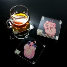 Anatomic Heart Slice Specimen Acrylic Square Beverage Coasters - $29.99