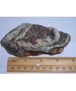 Unique Decorative Sparkly Gneiss Rock Specimen - $3.99