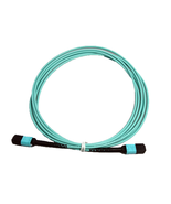 RiteAV MPO Female  - MPO Female Patch Cord, 12F, OM4, OFNP, Aqua, Straig... - $298.27