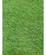1 Lb. Pack, Kentucky Blue Grass Seed #IMA7 - $23.99
