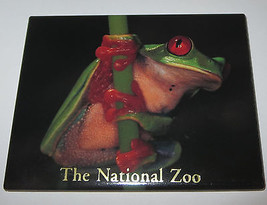 Tree FROG Magnet Fridge National Zoo Green Red Eyes Detailed Realistic New - £7.14 GBP