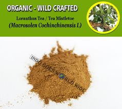 POWDER Tea Tree Mistletoe Loranthus Organic Wild Crafted Fresh Natural H... - $7.85+