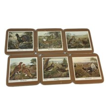Pimpernel Game Birds Coasters Grouse Partridge Pheasant Woodcock Caperca... - $14.90
