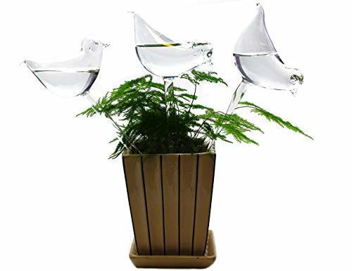 BOLUTEE 3 Pack Plant Waterer Self Watering System,Bird Shape Hand Blown Mini Dur