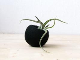 Succulent planter / air plant holder / cactus pot / plant vase / modern ... - $19.00