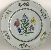 Spode Summer Palace W150 Dinner plate  - $20.00