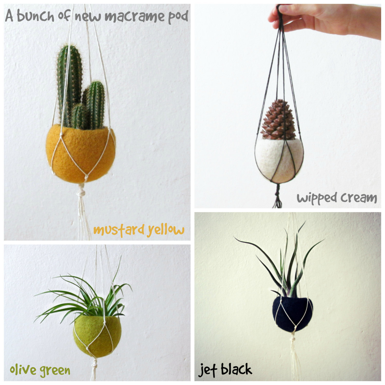 Modern hanging planter /Macrame plant hanger /air planter gift /air plant holder