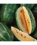 SHIP From US, 100 Seeds 'Tendersweet Orange' Watermelon, DIY Delicious F... - $54.99