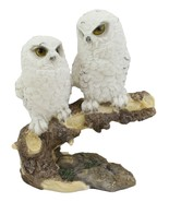 """White Baby Owls Perching On Winter Forest Tree Branch Statue 5.75""""H Owle... - $21.99"""