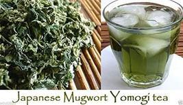 Japanese Mugwort Seeds-YOMOGI - Artemisia princeps, 500 Heirloom seeds - $5.94
