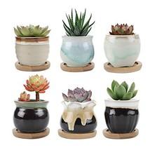 T4U 2.5 Inch Ceramic Succulent Pot,Cactus Planter Pot Plant Container Fl... - $19.82