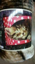 Kitten Cat Sleeping Royal Plush Raschel Throw blanket - $24.75