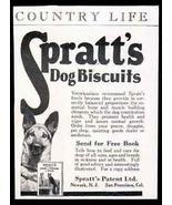 German Shepherd Dog Photo AD Spratt's Dog Biscuits 1929 - $14.99