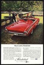 Ford Thunderbird 390 Red Convertible Parrots 1963 AD Classic Automobile - $12.99