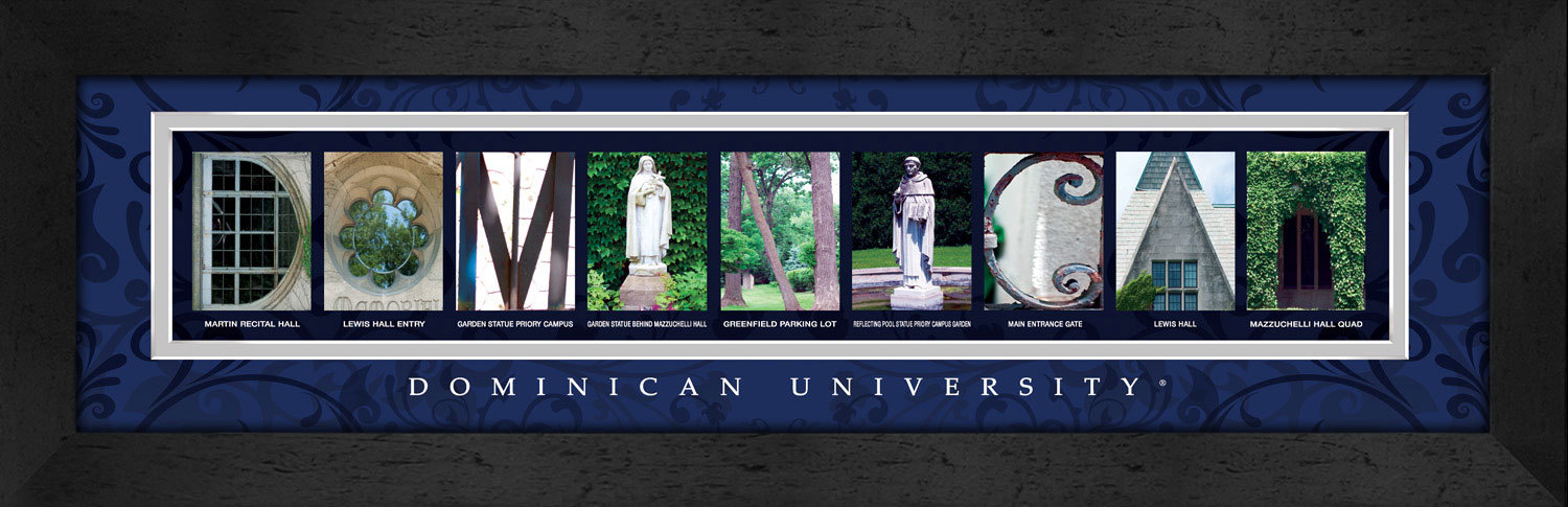 Primary image for Dominican University Officially Licensed Framed Campus Letter Art