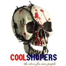 Halloween Bloody Broken Teeth Skull 100% Plastic Life Size Skull for Hal... - $25.01