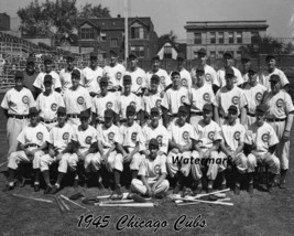 MLB 1945 Chicago Cubs Team Picture Black & White 8 X 10 Photo Picture - $6.99