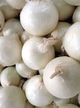 10 Variety Seeds - White Sweet Spanish Onion Seeds #SMS60 - $12.99+
