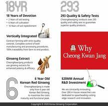 Hong Sam Won, Korean Red Ginseng Drink, 20 Pouches, 1.69 fl oz (50 ml) Each image 4