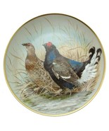 Limoges Gamebirds of the World Black Grouse Plate Basil Ede Bird Plate - $47.32