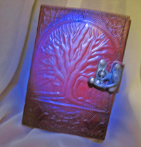 Haunted 14X Wishing Magnifier Journal High Magick Leather Bound Witch CASSIA4 - $28.00