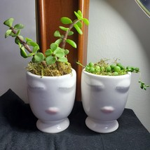Succulents in Doll Face Planter, set of 2, Live String of Pearls Elephant Bush - $24.99