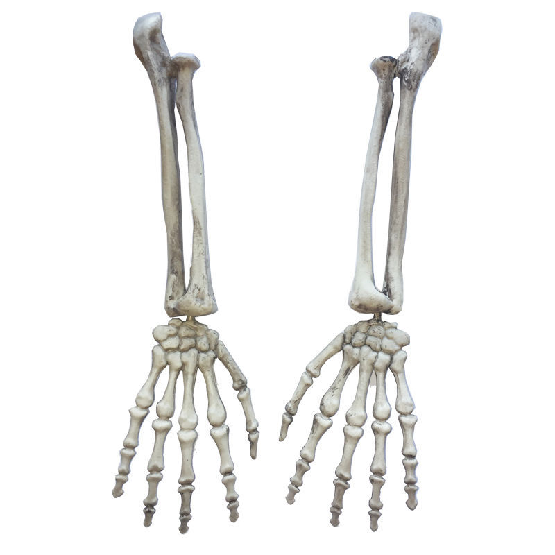 Halloween Gothic Skeleton Hand Arms Bone Haunted House Escape Horror Props Kit