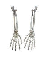 Halloween Gothic Skeleton Hand Arms Bone Haunted House Escape Horror Pro... - £15.20 GBP
