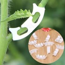 Plants Clips Plant Vines Vegetable Farming Clip Plant Tomato Clip Fastener  - €5,20 EUR