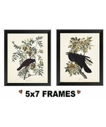 5x7 Black Crow Pictures Primitive Birds on Berry Tree Branch Wall Hangings - $8.99+