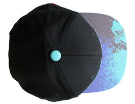 Staple World Renown Pigeon Brand Men's Aqua Snapback Hat NWT image 4