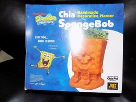 Sponge Bob Spongebob Squarepants Chia Pet Decorative Terra Cotta Planter New - $28.80