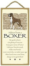 Advice From a Boxer Dog 10 X 5 Wood Sign Plaque  - $14.99