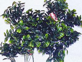 12 Vintage Plastic MISTLETOE Greens Floral Pick... - $8.99