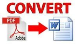 PDF FILE TO WORD FILE CONVERTER NEW SOFTWARE EASY TO USE PDF DOCUMENT - $2.99